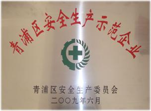 青浦区安全生产示范企业
