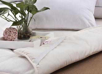 蚕蛹蛋白健康床垫